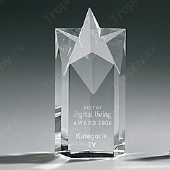 Engraved Crystal Star Trophy Award